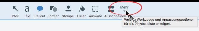 Screen Capture im Tech Support